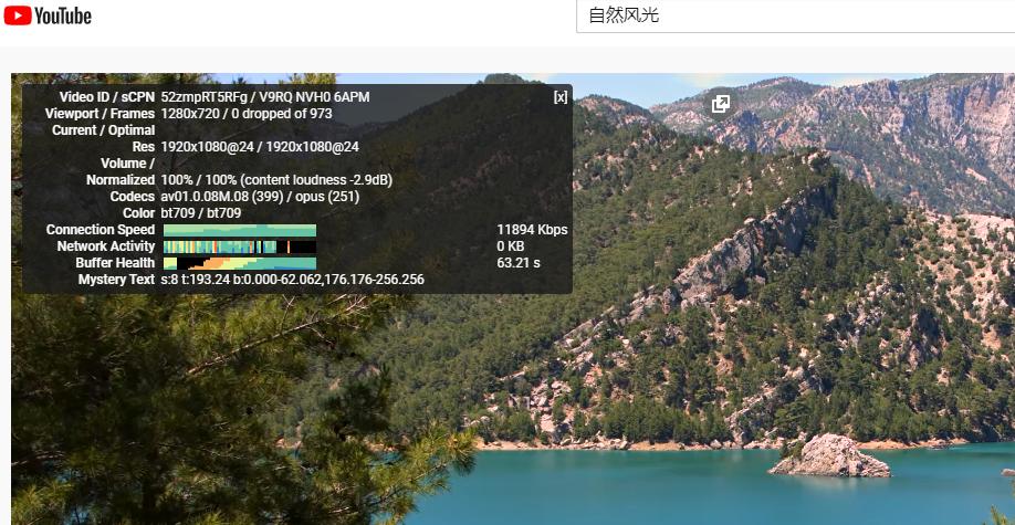 vultr国外云服务器看视频速度测试
