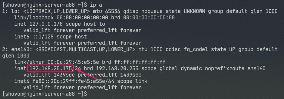 查看IP地址
