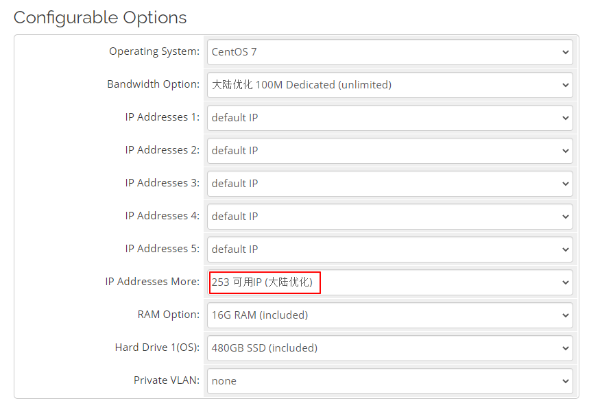 RAKsmart美国站群服务器方案配置