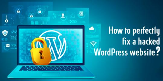 WordPress建站