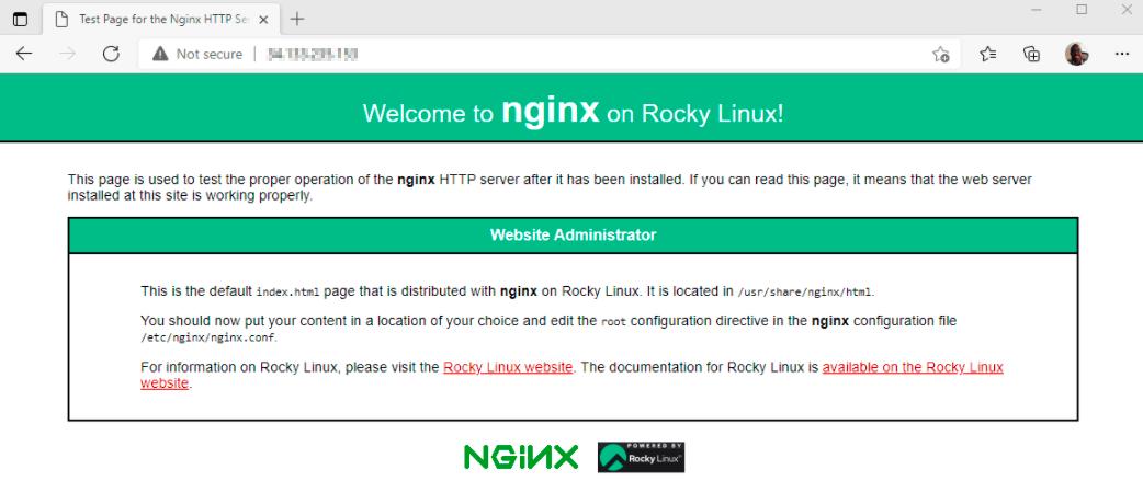 在 Rocky Linux上检查Nginx页面