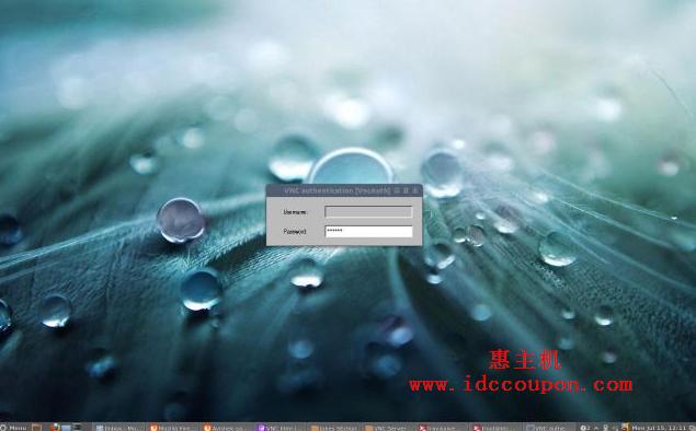 输入VNC用户密码